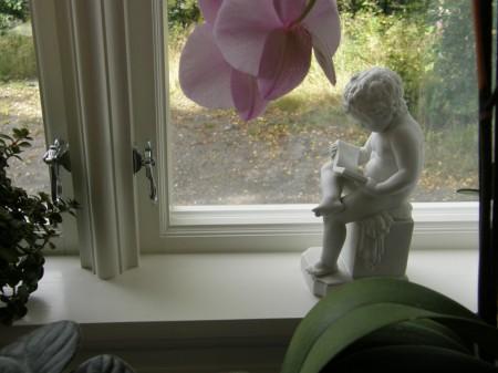 Plassen ved vinduet - et sted å finne roen.